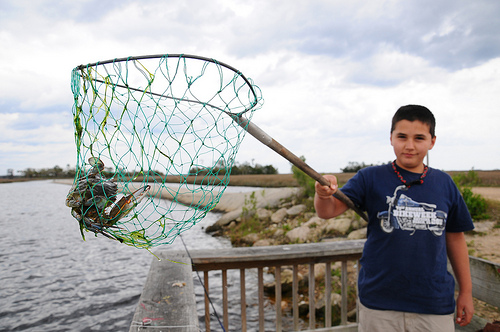 Take advantage of license-free fishing Saturday in Florida's fresh waters (VIDEO)